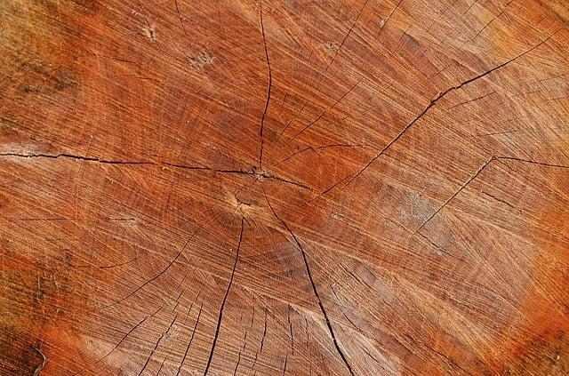 resine epoxy pour bois