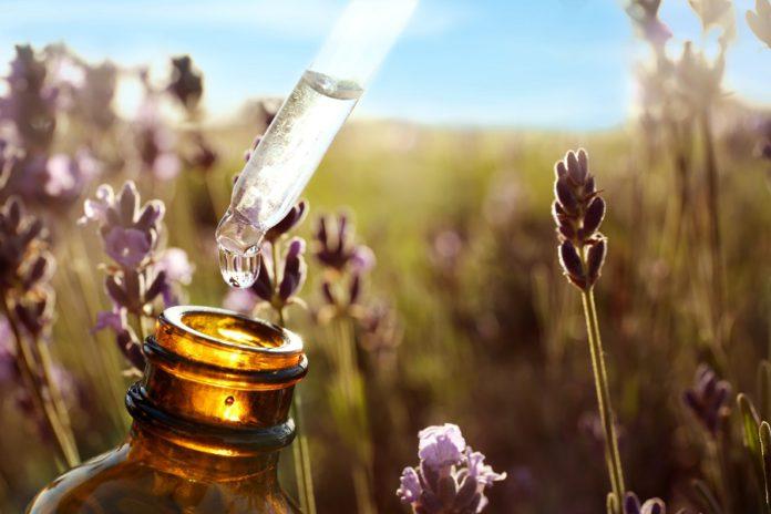huile essentielle champ extrait