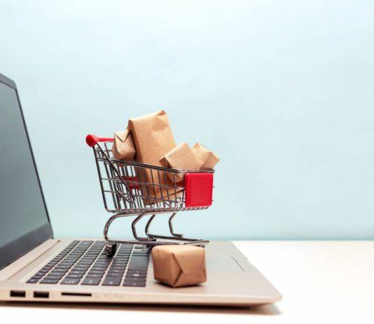 dropshipping-rapportent-internet-business-sur